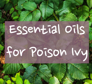 essential-oils-poision-ivy