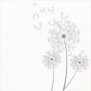 dandelion-steam