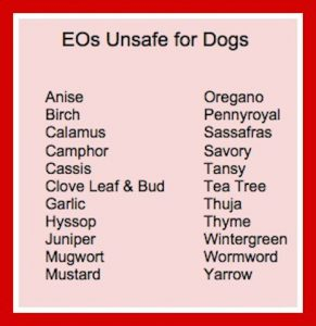 Unsafe Oils for dogs infographic