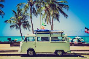 beach trip and palm trees