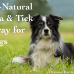 all natural flea and tick spray for dogs