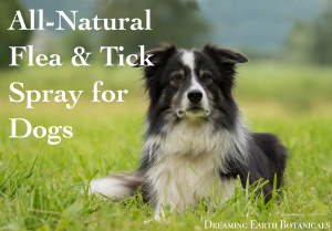 Flea and Tick Repellent Spray for Dogs